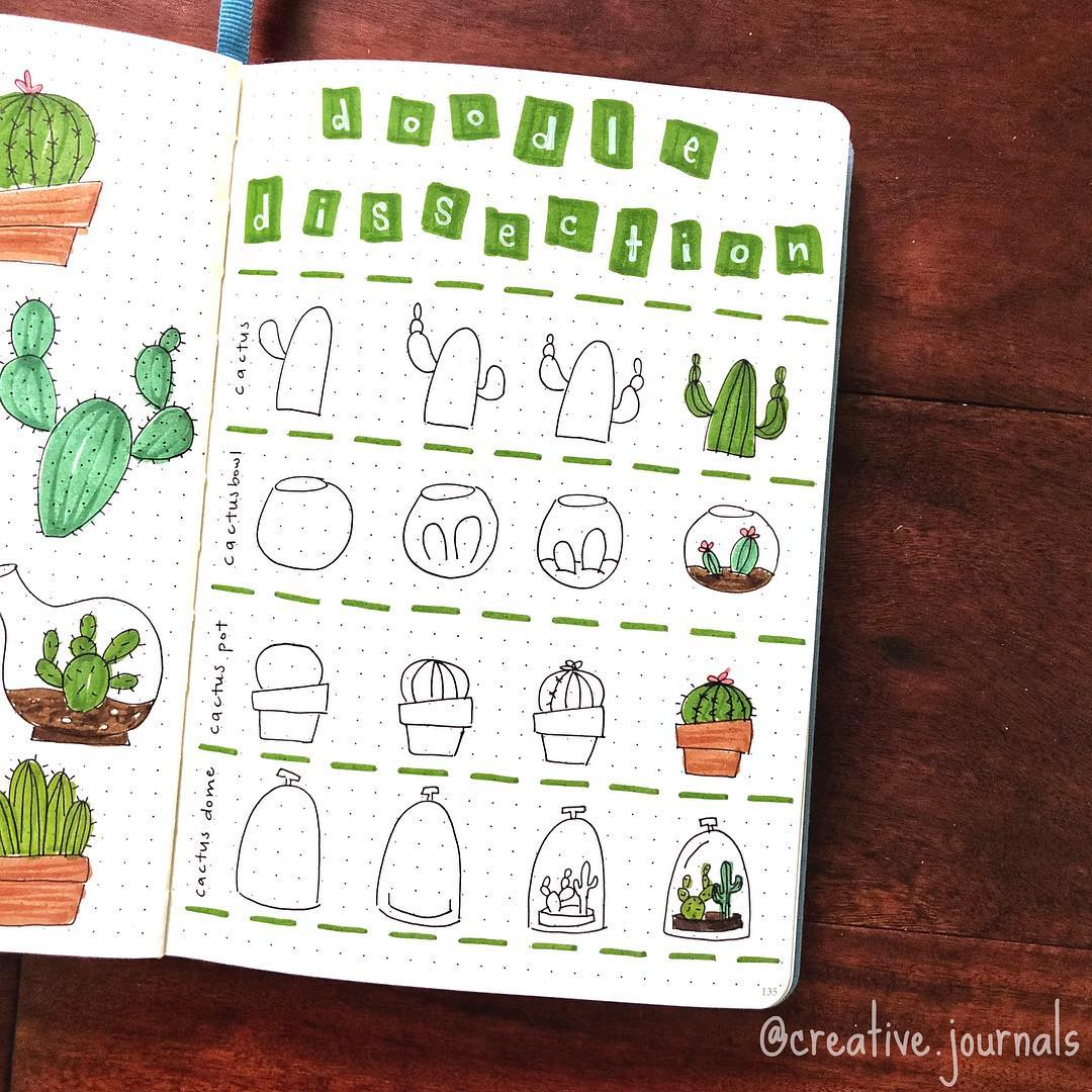 how to draw succulents tutorial, succulent doodles, how to draw cacti, bullet journal doodles