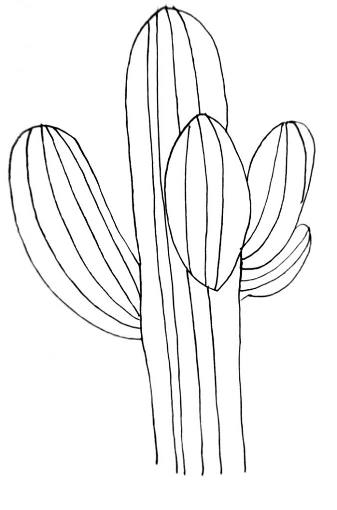 How To Draw A Cactus Step 6