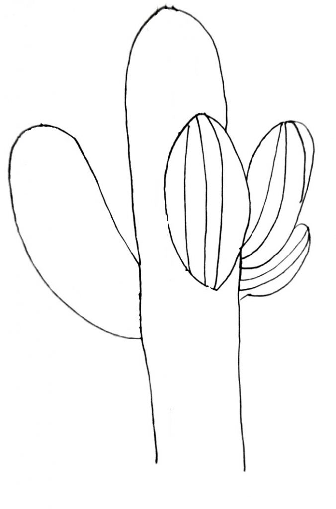 How To Draw A Cactus Step 5