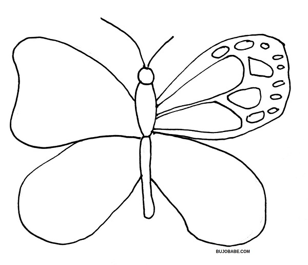 how to draw a butterfly step 7