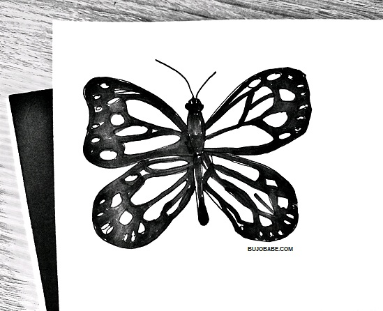 Butterfly Drawing Tutorial Step By Step