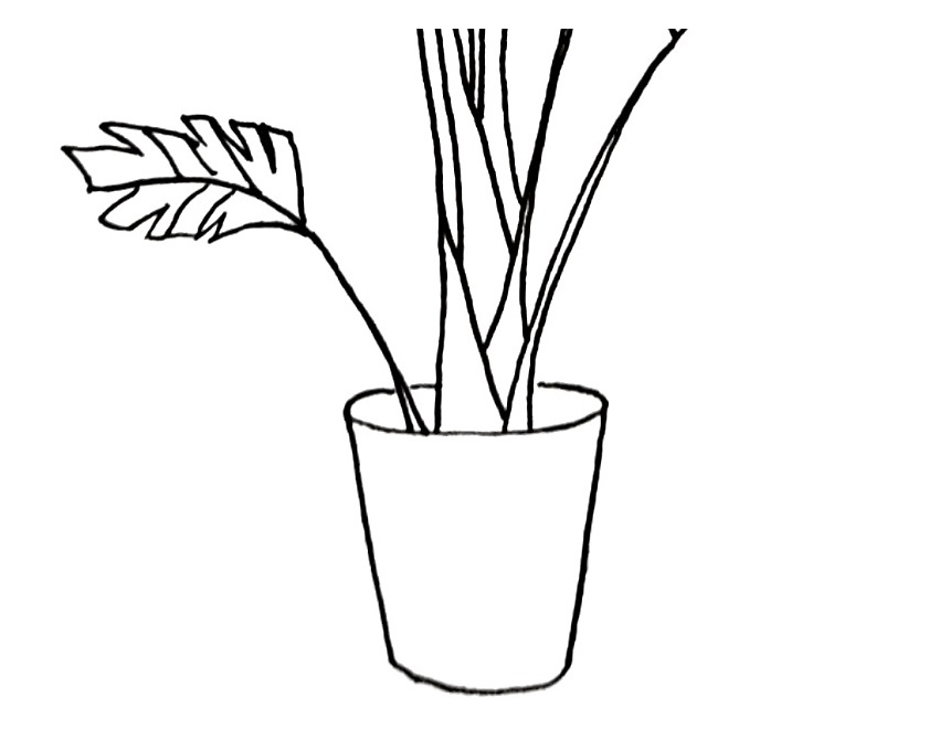 how to draw a pot plant step 5