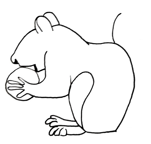 how to draw a squirrel step 9