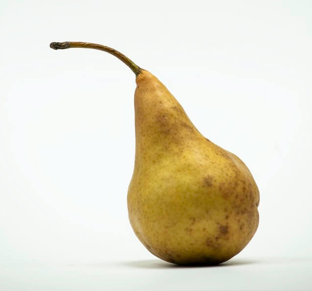 pear drawing reference