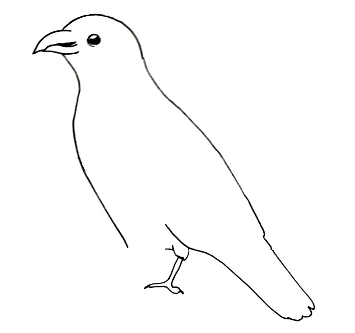 How to draw a crow step 5