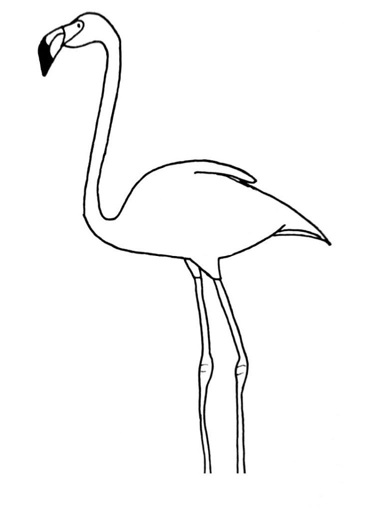 how to draw a flamingo step 10
