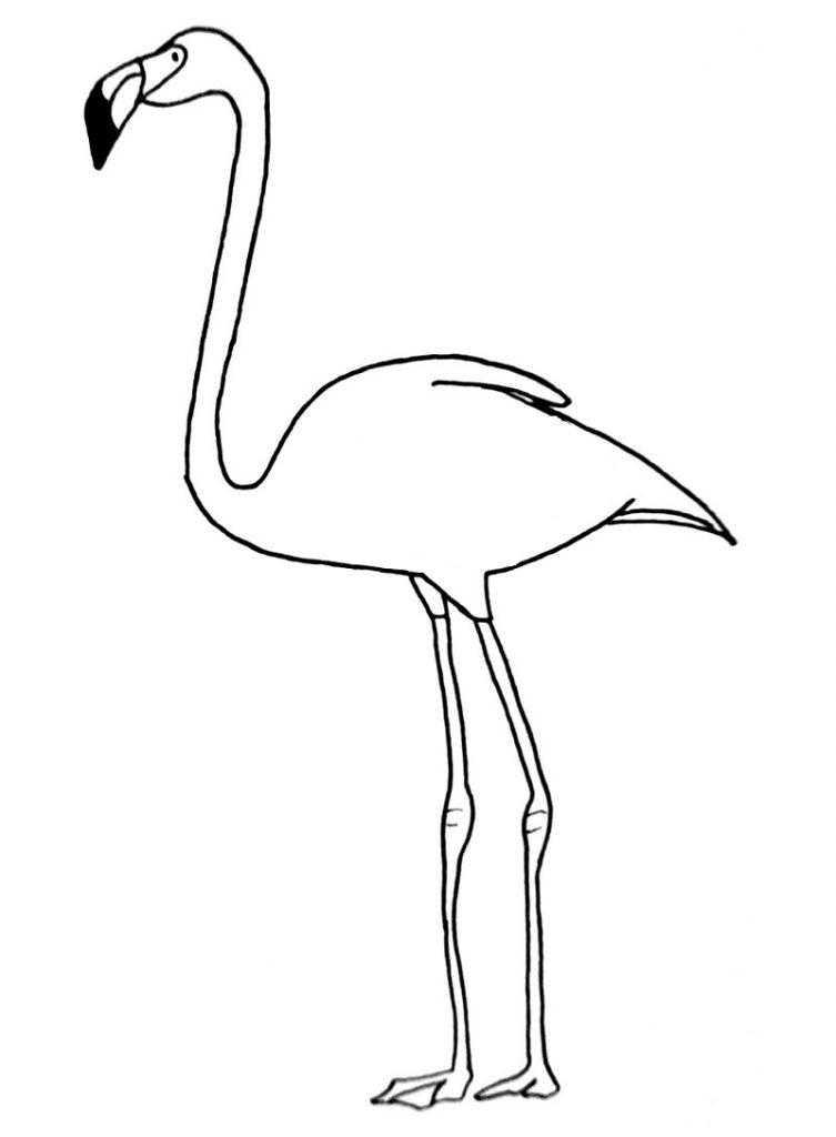 how to draw a flamingo step 11