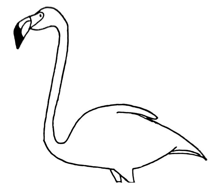 how to draw a flamingo step 8