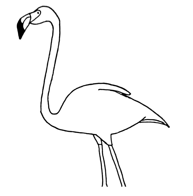 how to draw a flamingo step 9