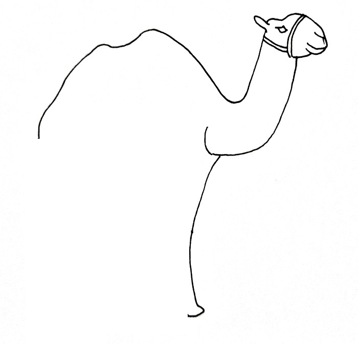 How To Draw A Camel Step 7