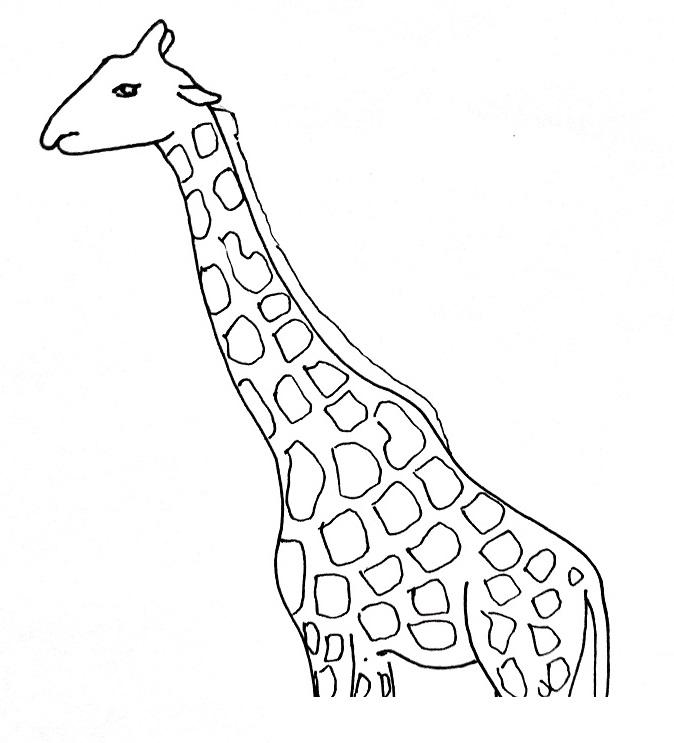 How to draw a giraffe step 3