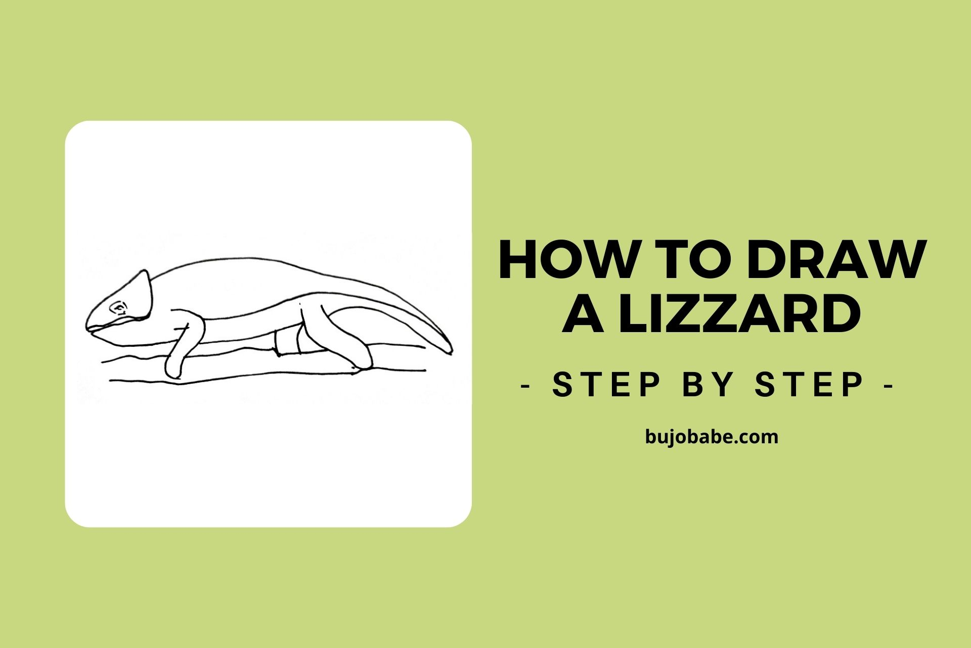 how to draw a lizard step by step