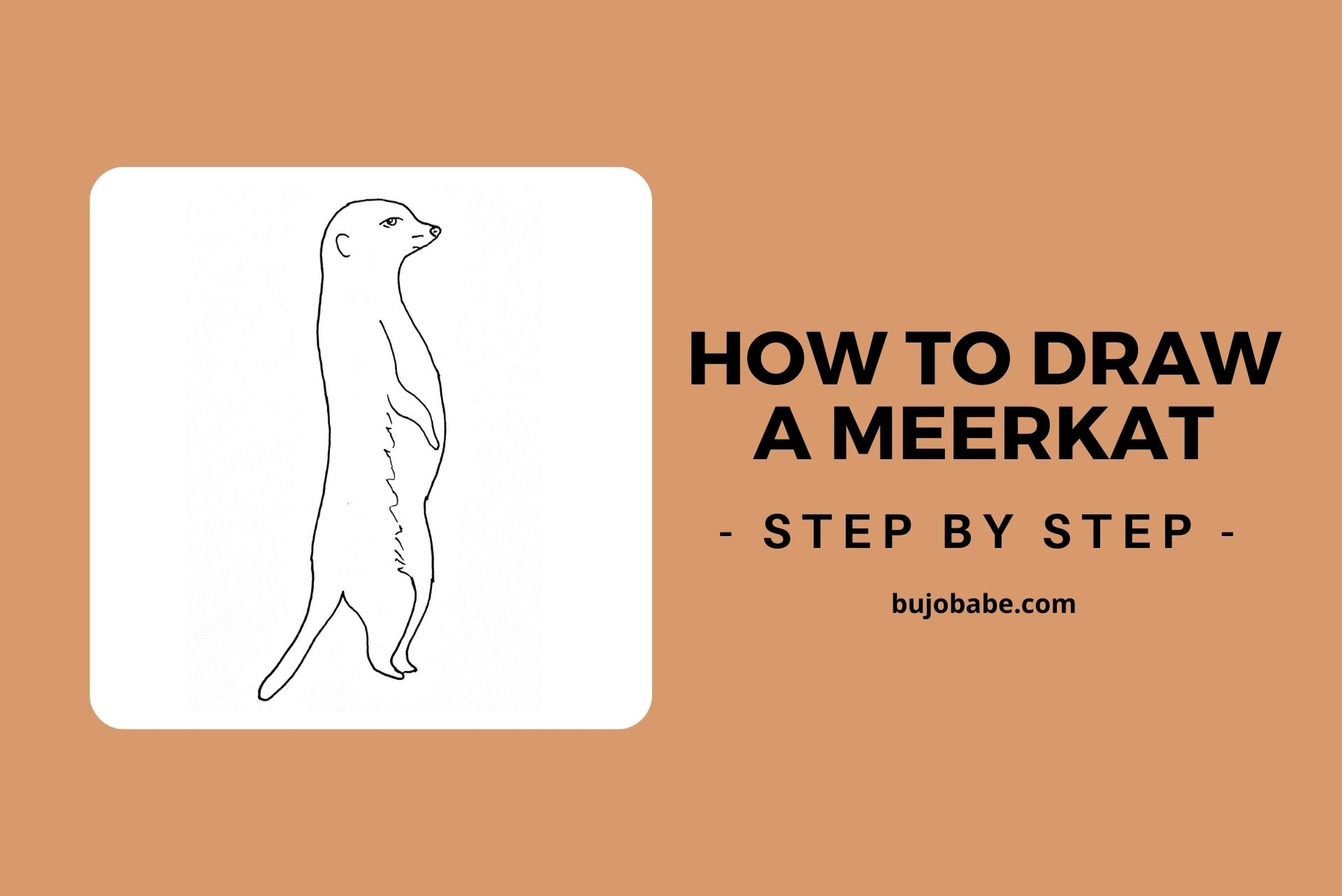 how to draw a meerkat step by step
