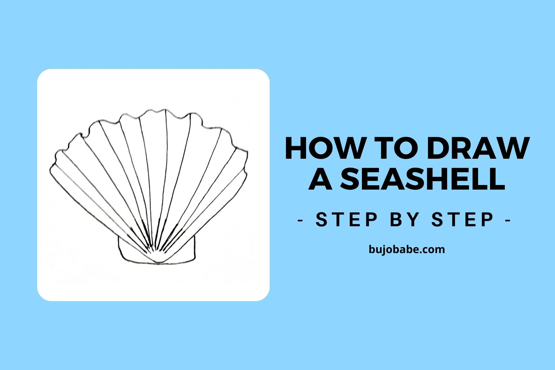 how to draw a seashell step by step