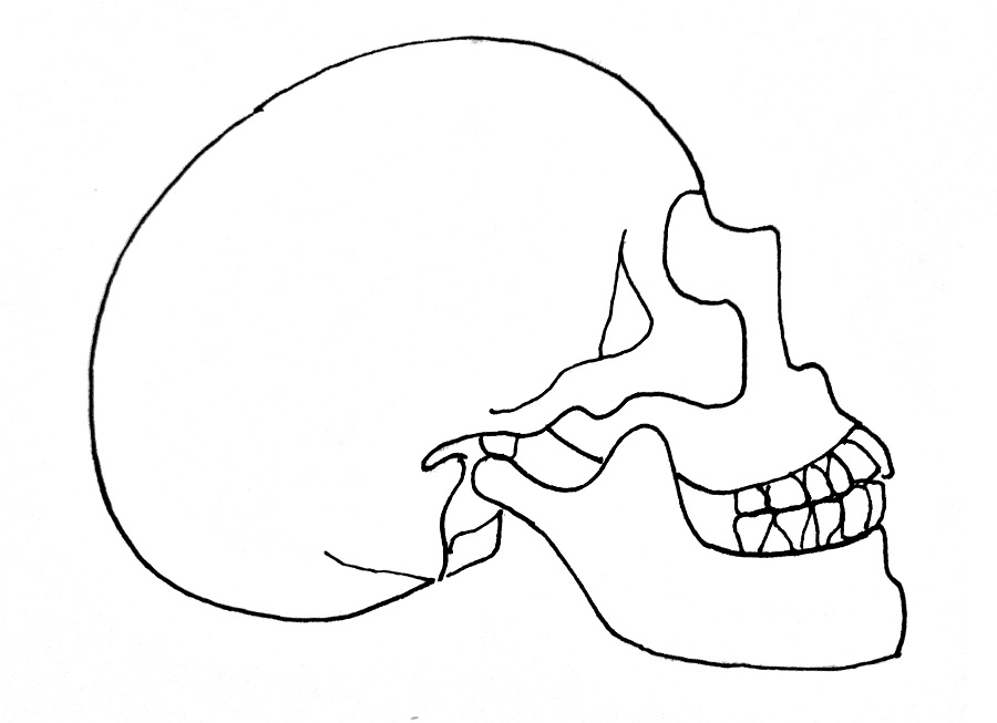 How To Draw A Skull Step 6