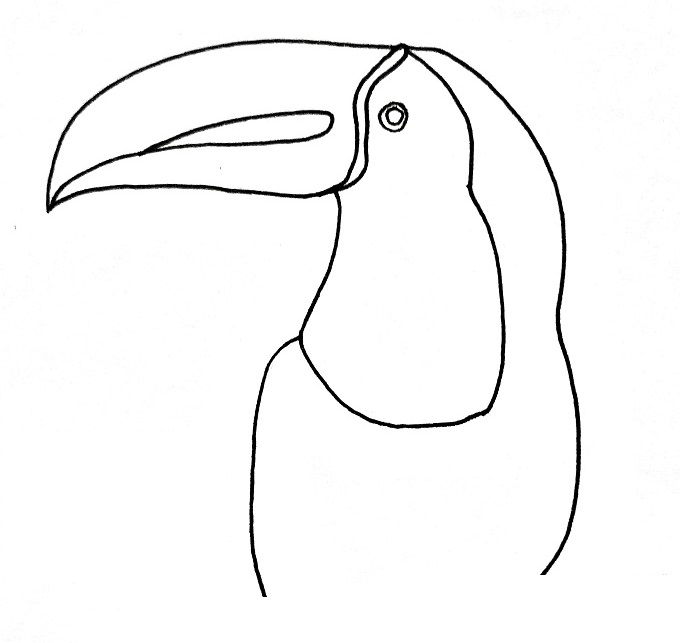 How to draw a toucan step 5