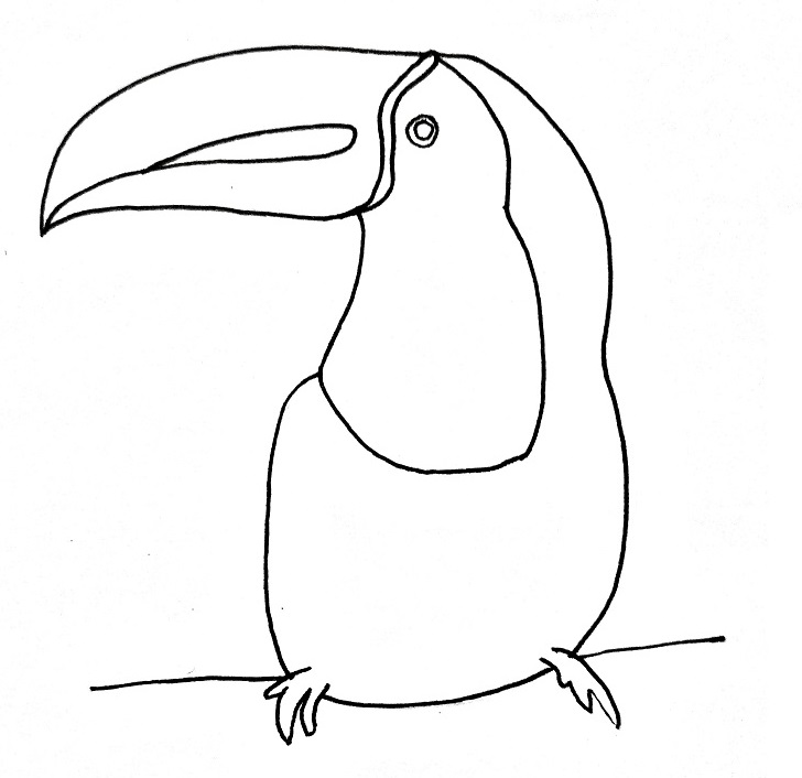 How to draw a toucan step 6
