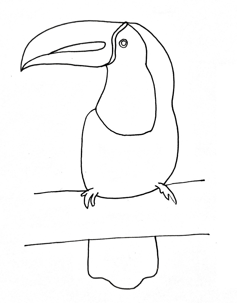 How to draw a toucan step 8
