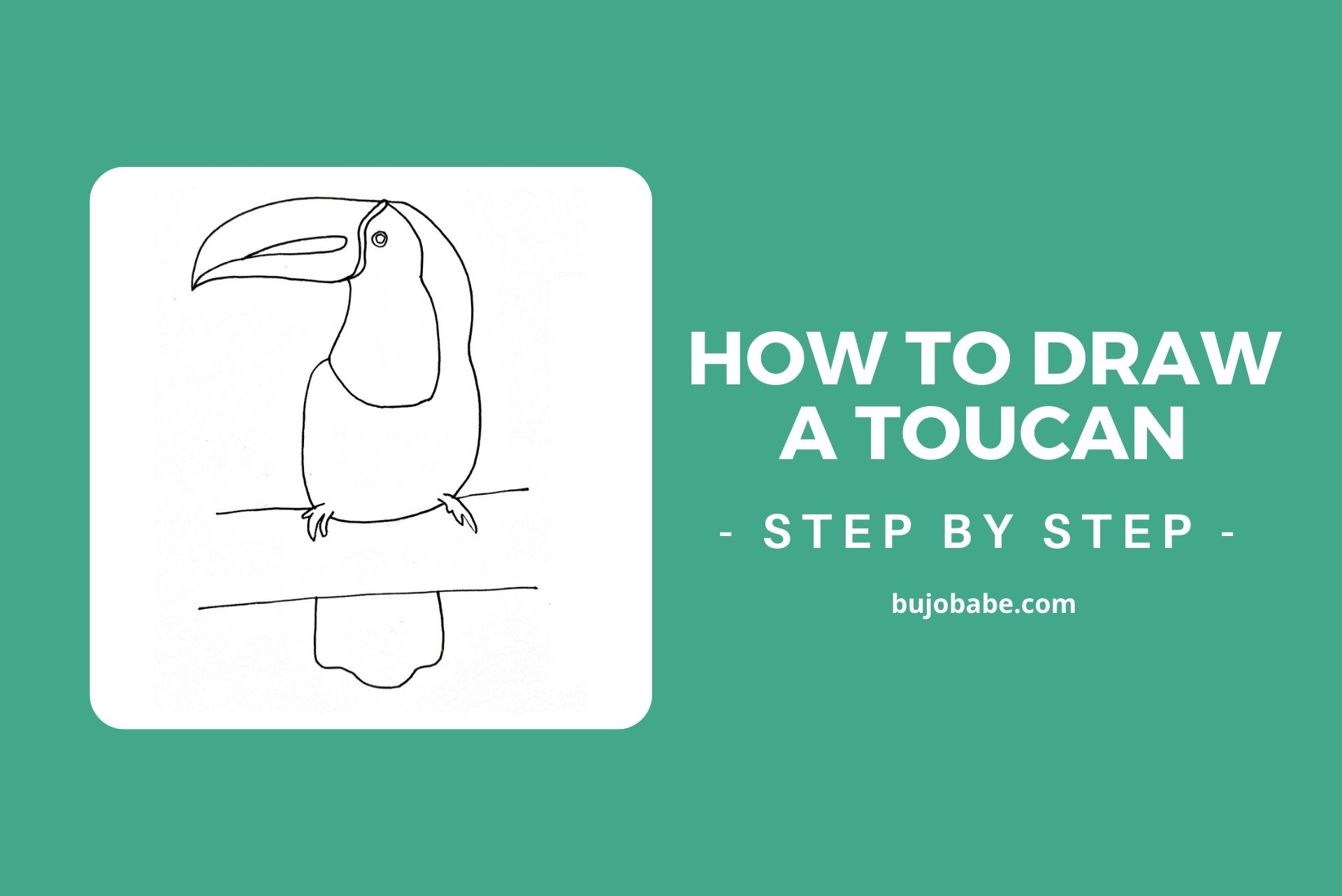 how to draw a toucan step by step