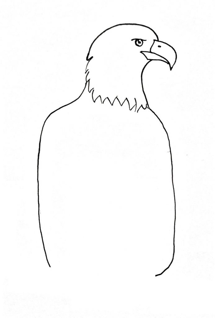 how to draw an eagle step 4