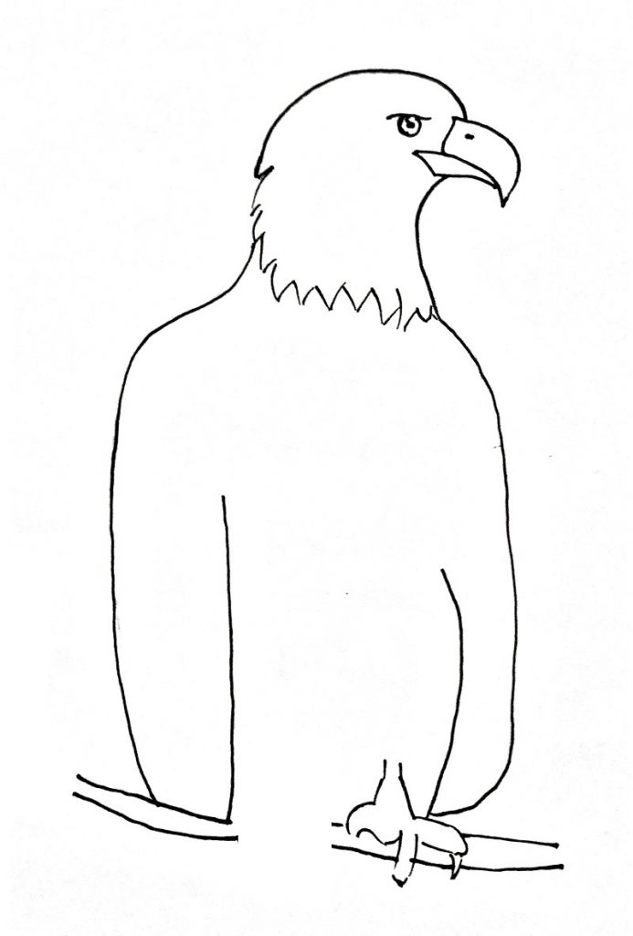 how to draw an eagle step 6