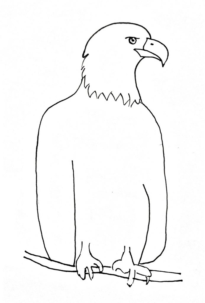 how to draw an eagle step 7