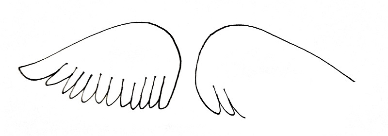 How To Draw Angel Wings Step 3