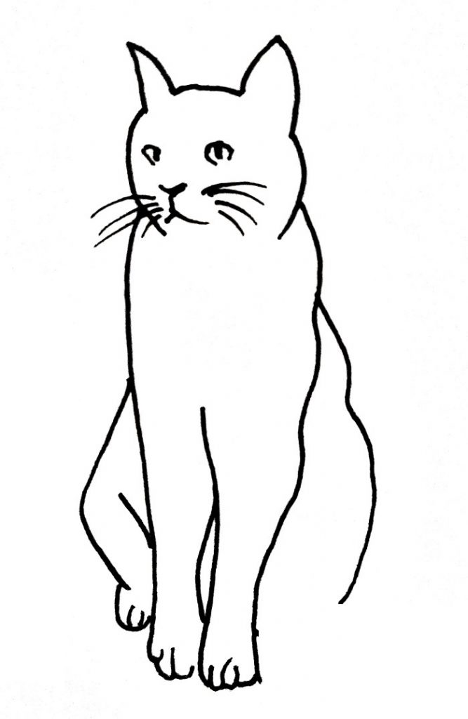 How To Draw A Cat Step 5