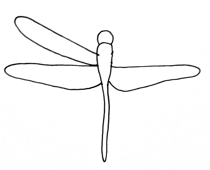 How To Draw A Dragonfly Step 5