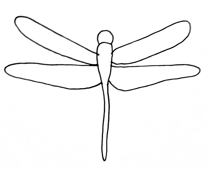 How To Draw A Dragonfly Step 6