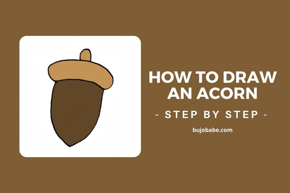 how to draw an acorn, acorn drawing guide