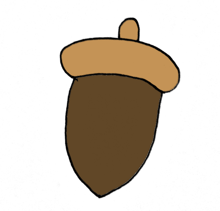 How To Draw An Acorn Step 5